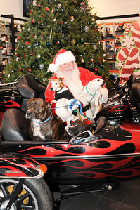 Good old Santa seems to have his hands and Harley full with this quartet. Pictured are Patty Hale's canine chorus consisting of Buster, Mimi, Morrison and Munster.  St. Clair, PA