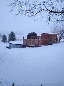 By Shane Werley Thinking of warmer weather. Taken on 12/14/13.